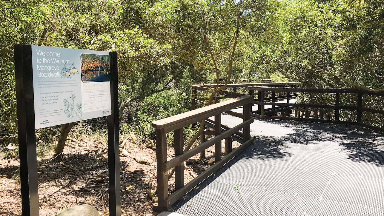 Beginning of the Wynnum Mangrove Boardwalk in Moreton Bay Region Brisbane